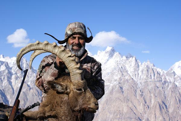Himalayan ibex - photo#28