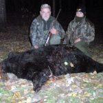 Canada – Black Bear