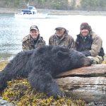 Alaska – Black Bear