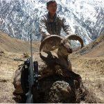 Nepal – Thar & Blue Sheep