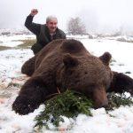 Croatia – Bears